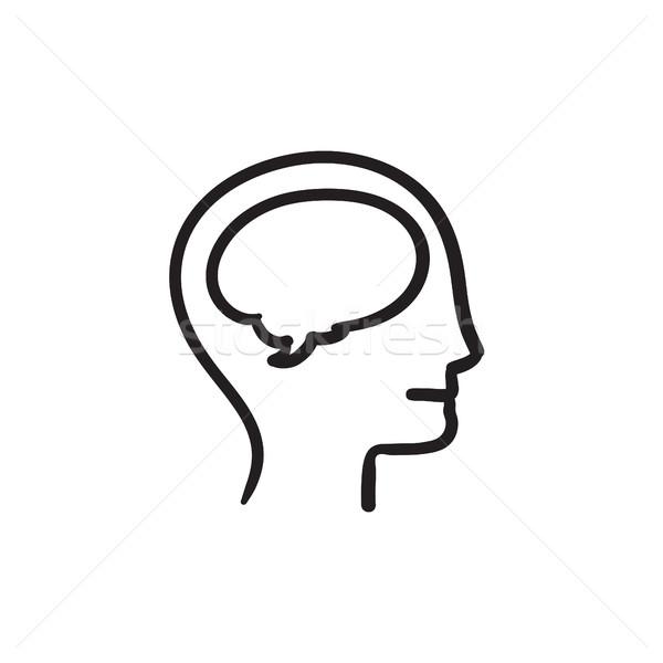 Human head with brain sketch icon. Stock photo © RAStudio
