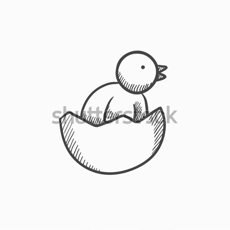Chick peeking out of egg shell sketch icon. Stock photo © RAStudio