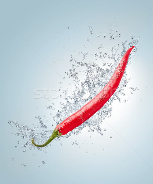 Hot Pepper Stock photo © RAStudio