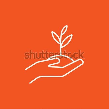Hands holding seedling in soil line icon. Stock photo © RAStudio