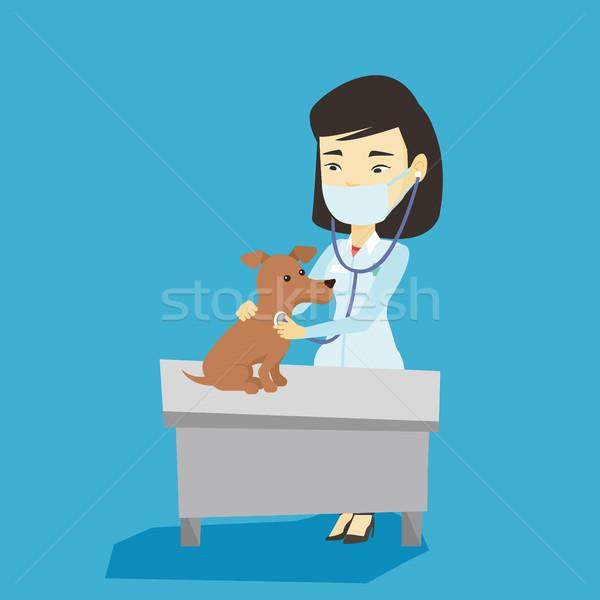 ветеринар собака молодые азиатских больницу Сток-фото © RAStudio