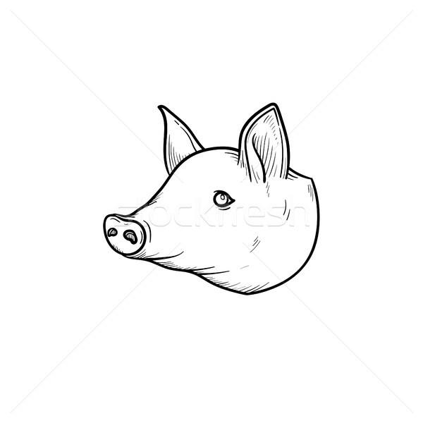 Varkensvlees vlees schets icon schets Stockfoto © RAStudio