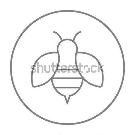 Stockfoto: Bee · lijn · icon · web · mobiele · infographics