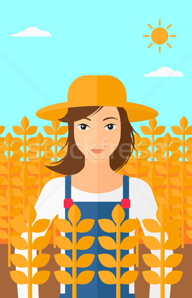 Man in wheat field. Stock photo © RAStudio