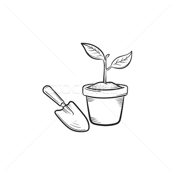 Garden trowel and pot hand drawn sketch icon. Stock photo © RAStudio