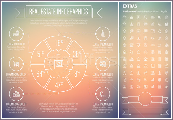 Real Estate Line Design Infographic Template Stock photo © RAStudio