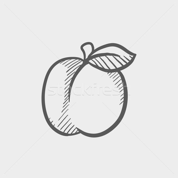 Szilva levél rajz ikon háló mobil Stock fotó © RAStudio