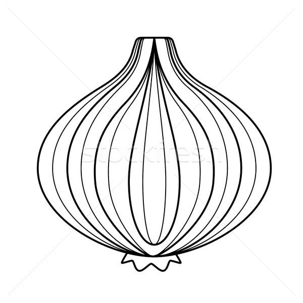 Cebola bulbo vetor linha ícone isolado Foto stock © RAStudio