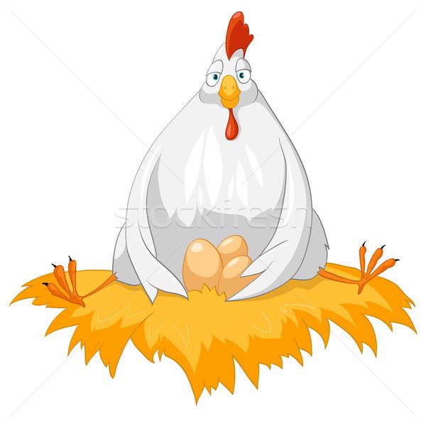 Pollo aislado blanco vector naturaleza Foto stock © RAStudio