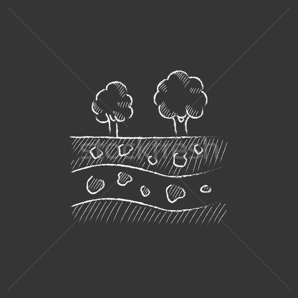 カット 土壌 異なる 層 木 先頭 ストックフォト © RAStudio
