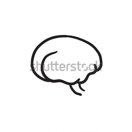 Brain sketch icon. Stock photo © RAStudio