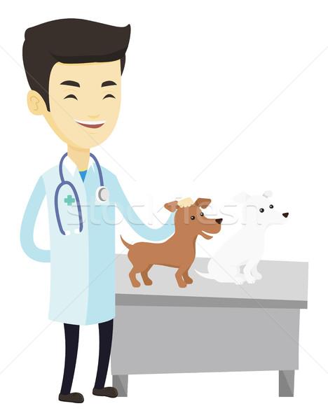 ветеринар собаки молодые азиатских стетоскоп Сток-фото © RAStudio