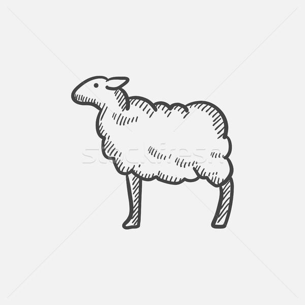 Moutons croquis icône web mobiles infographie Photo stock © RAStudio