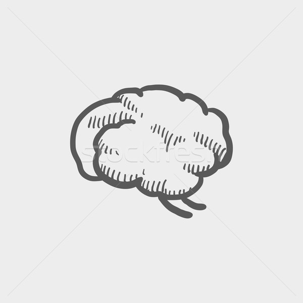 Human brain sketch icon Stock photo © RAStudio