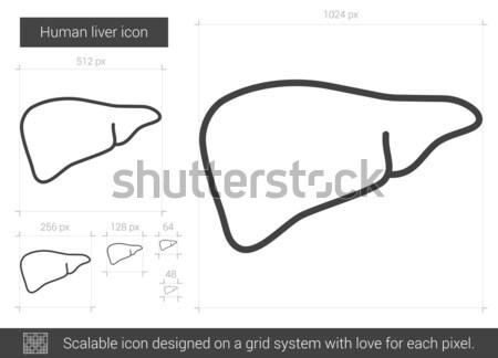 Kort pants lijn icon vector geïsoleerd Stockfoto © RAStudio