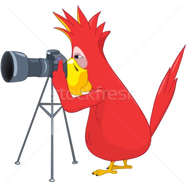Funny Parrot. Photographer. Stock photo © RAStudio