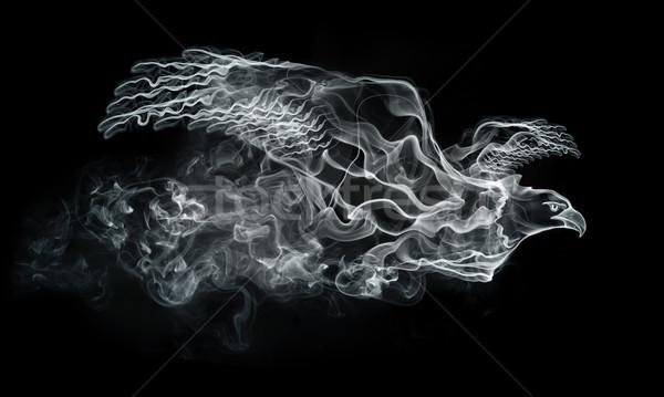 Duman kartal yalıtılmış siyah bilgisayar grafikleri doğa Stok fotoğraf © RAStudio