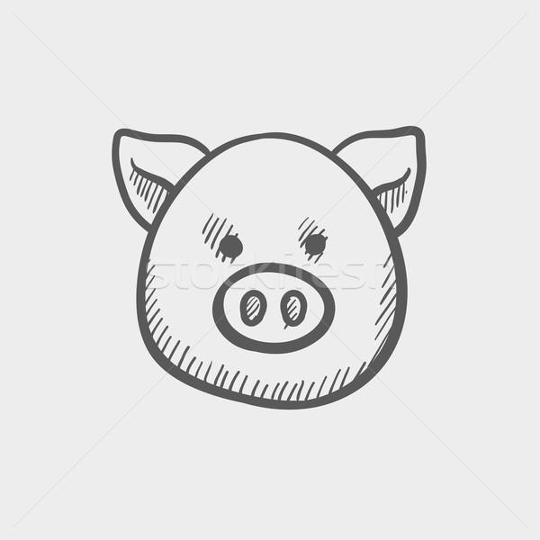 Pig face sketch icon Stock photo © RAStudio
