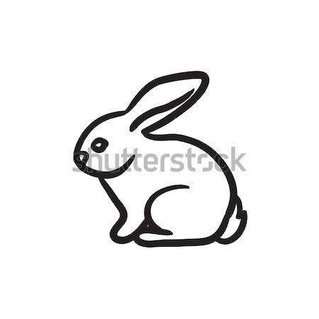 Rabbit sketch icon. Stock photo © RAStudio