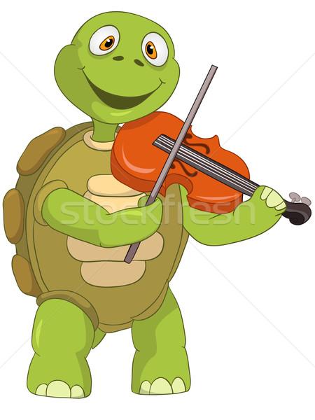 Vicces teknős hegedűművész rajzfilmfigura izolált fehér Stock fotó © RAStudio