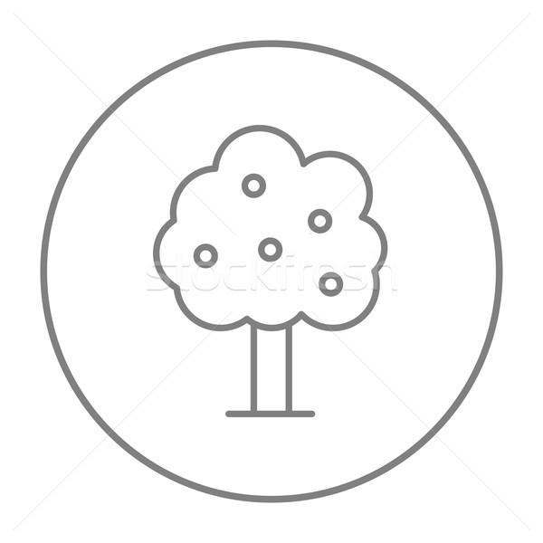 Fruit tree line icon. Stock photo © RAStudio