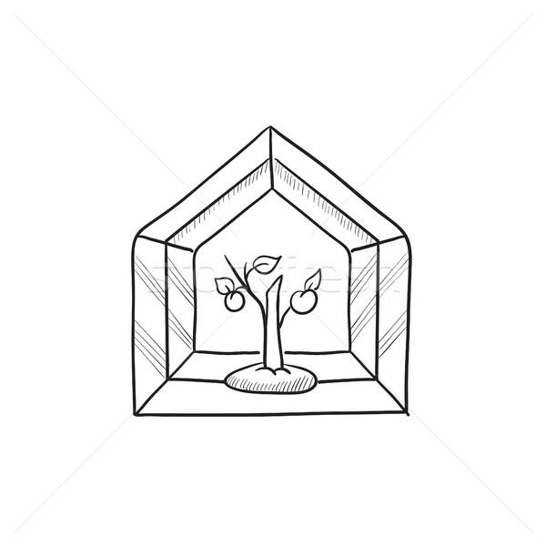 Invernadero boceto icono vector aislado dibujado a mano Foto stock © RAStudio