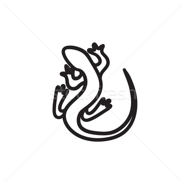 Gyík rajz ikon vektor izolált kézzel rajzolt Stock fotó © RAStudio