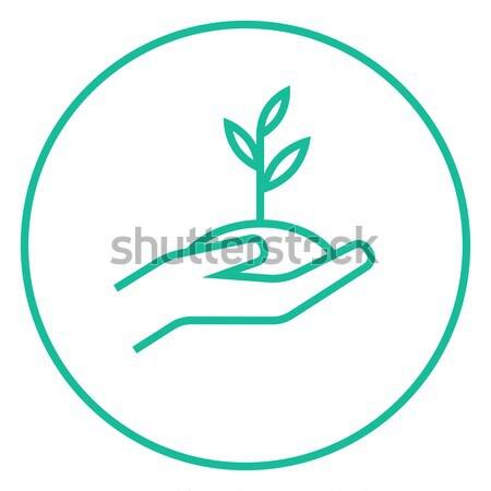 Manos planta de semillero suelo línea icono Foto stock © RAStudio