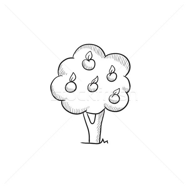 árvore frutífera esboço ícone vetor isolado Foto stock © RAStudio