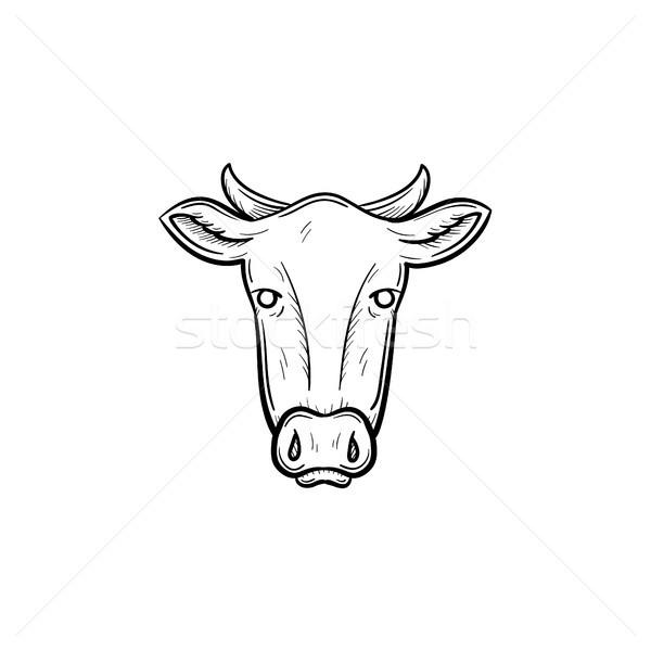 ストックフォト: 牛 · 頭 · 手描き · スケッチ · アイコン · ベクトル