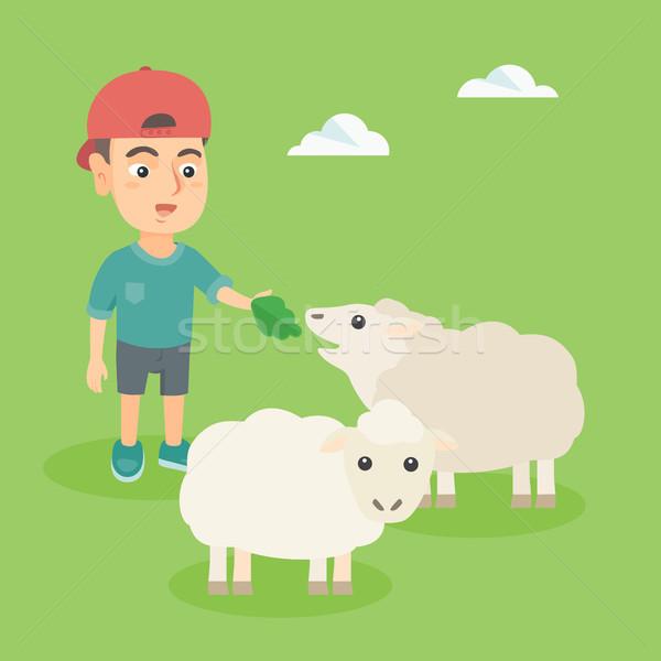 Pequeno caucasiano menino ovelha salada Foto stock © RAStudio