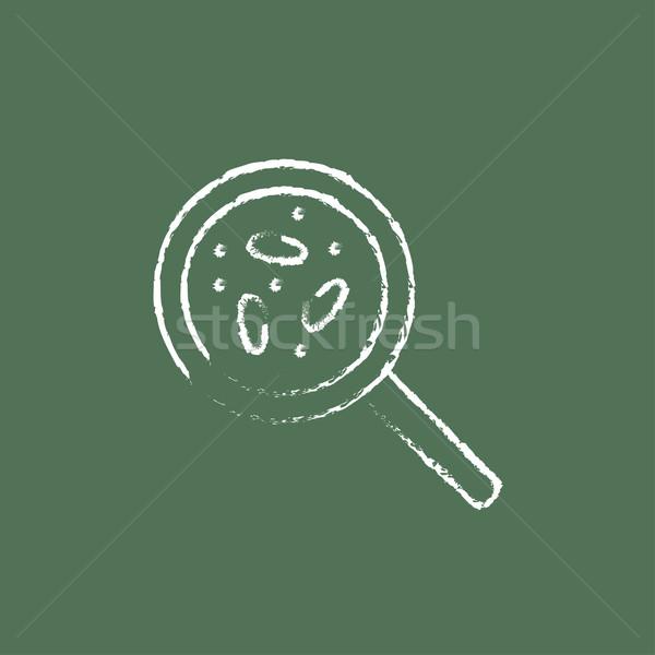Microorganisms under magnifier icon drawn in chalk. Stock photo © RAStudio