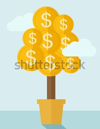 Pénz növény edény növekvő érme dollárjel Stock fotó © RAStudio