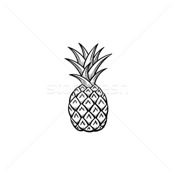 Ananas sketch icona vettore contorno Foto d'archivio © RAStudio