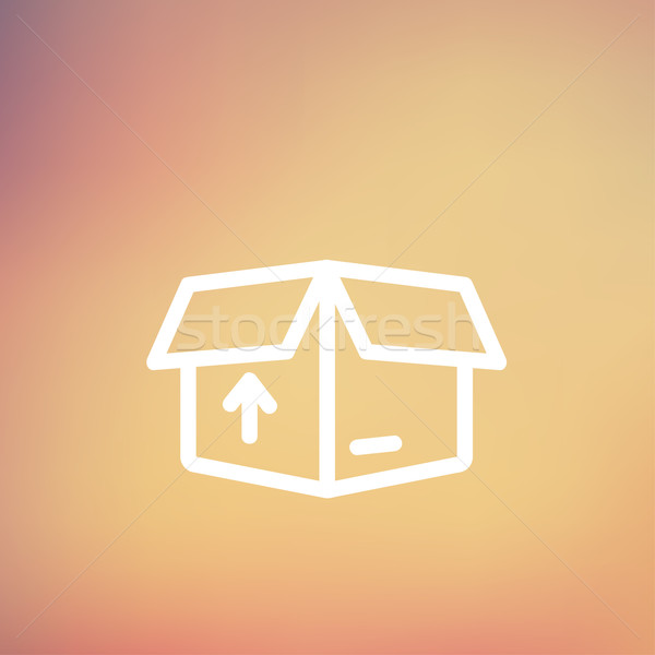 Box with arrow up inward, incoming, loading thin line icon Stock photo © RAStudio