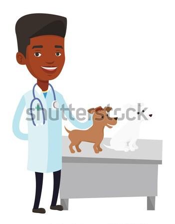 ветеринар собаки стетоскоп больницу ветеринар Сток-фото © RAStudio
