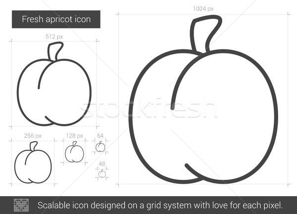Fresh apricot line icon. Stock photo © RAStudio
