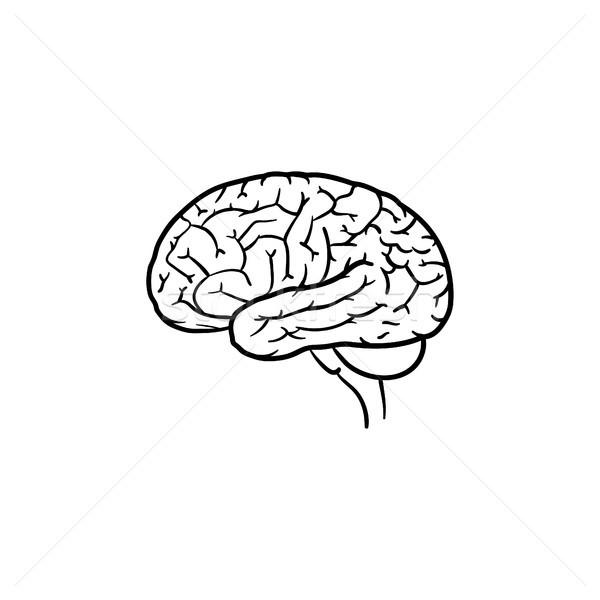 Zdjęcia stock: Gryzmolić · ikona · mózgu