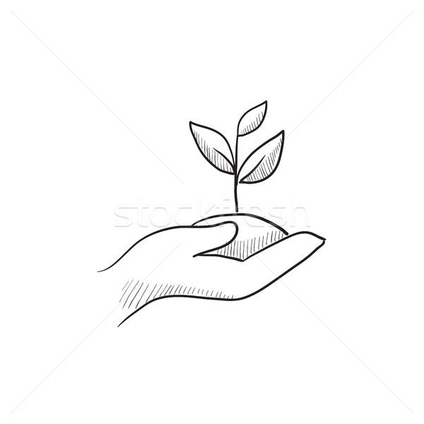 手 苗 土壌 スケッチ アイコン ストックフォト © RAStudio