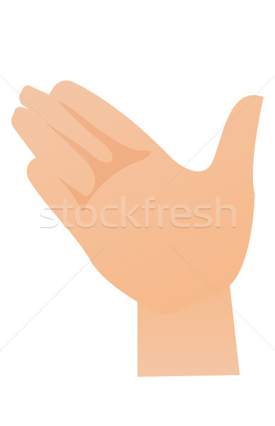 Right palm hand vector cartoon illustration  vector illustration