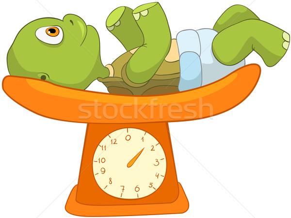 Funny Turtle. Baby Weighing Stock photo © RAStudio