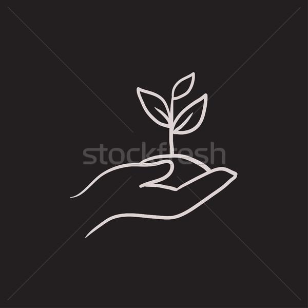 Eller fide toprak kroki ikon Stok fotoğraf © RAStudio