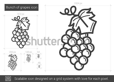 Bunch of grapes line icon. Stock photo © RAStudio