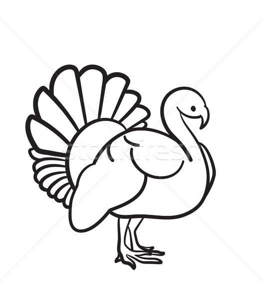 Hálaadás nap Törökország kézzel rajzolt rajz ikon Stock fotó © RAStudio
