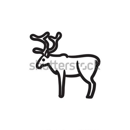 鹿 スケッチ アイコン ベクトル 孤立した 手描き ストックフォト © RAStudio