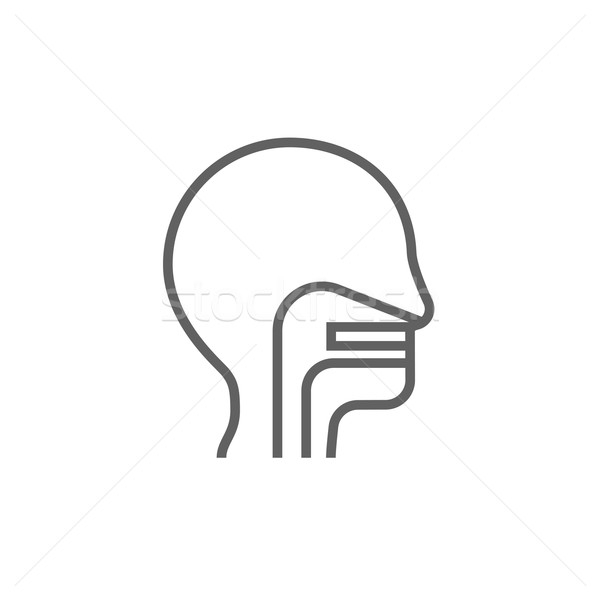 Human head with ear, nose, throat system line icon. Stock photo © RAStudio