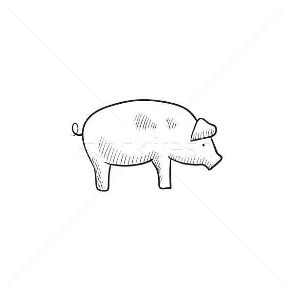 Pig sketch icon. Stock photo © RAStudio