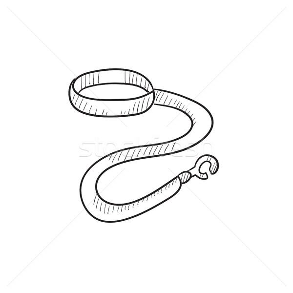 Dog leash and collar sketch icon. Stock photo © RAStudio