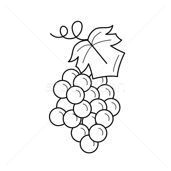 Bunch of grapes vector line icon. Stock photo © RAStudio