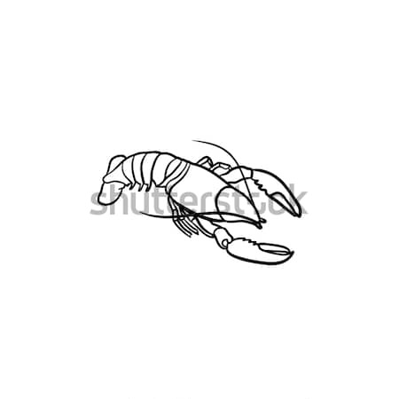 Lobster hand drawn sketch icon. Stock photo © RAStudio